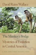 The Monkey's Bridge